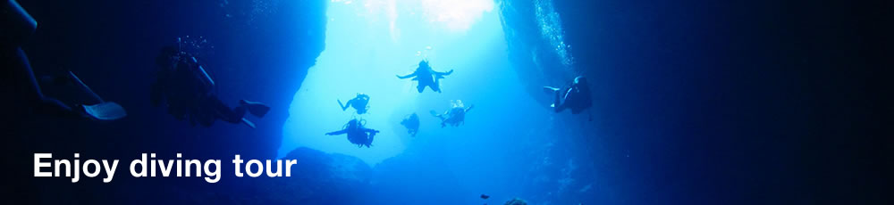 Enjoy diving tour
